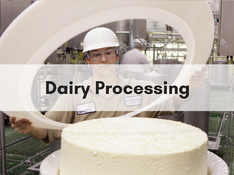 Dairy Processing careers southern idaho economic development